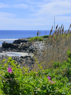 Begin The Marginal Way